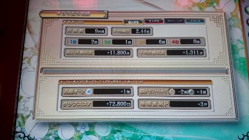 DSC_0746 (490x275)