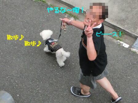 b0467.jpg