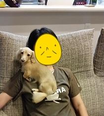 ママとちゃんこ
