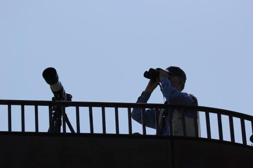 鷹の渡りを観察する人