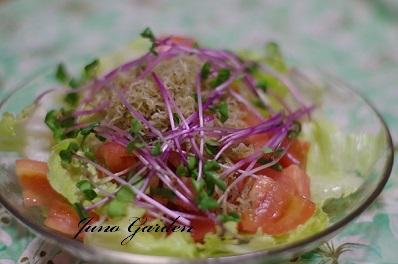 トマトとジャコのサラダ1531