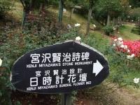 2015-09-19-秋バラ園ー100