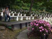 2015-09-19-秋バラ園ー165