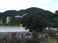 2015-09-19-秋バラ園ー175