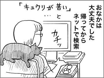 kfc00422-6
