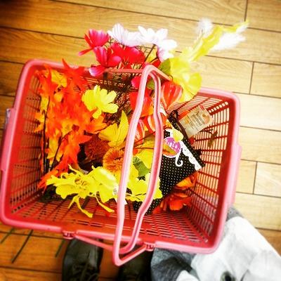 s-秋のお花たち