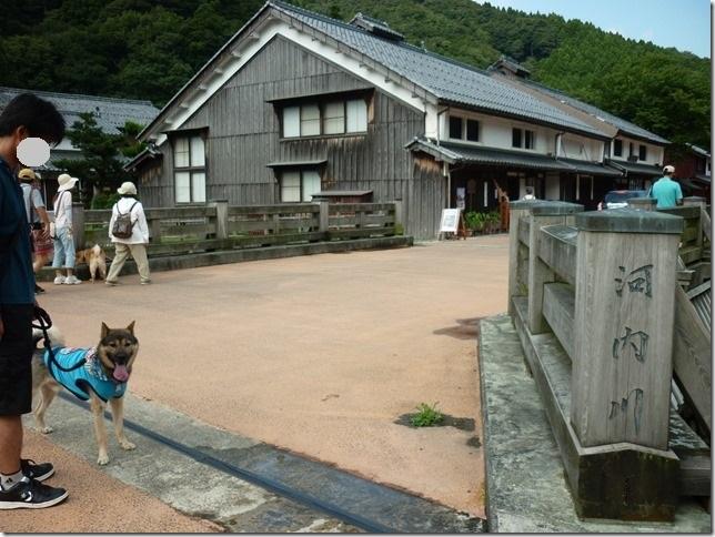 201508福井滋賀2-05