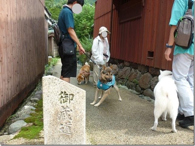 201508福井滋賀3-03