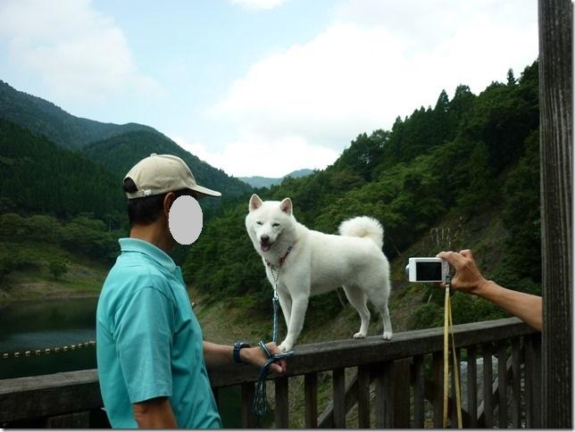 201508福井滋賀4-15