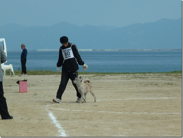 201510NKC北陸展03-05