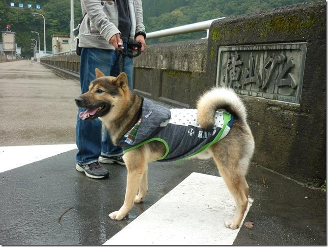 201510ダム散歩横山ダム1-08