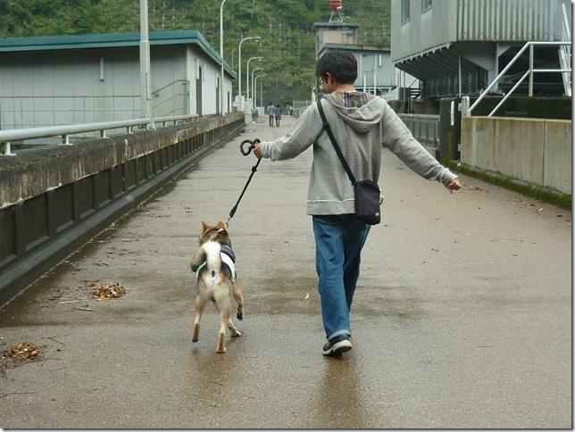 201510ダム散歩横山ダム1-14