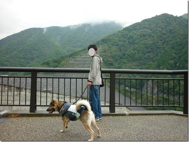 201510ダム散歩徳山ダム1-14