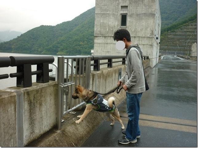 201510ダム散歩徳山ダム1-20
