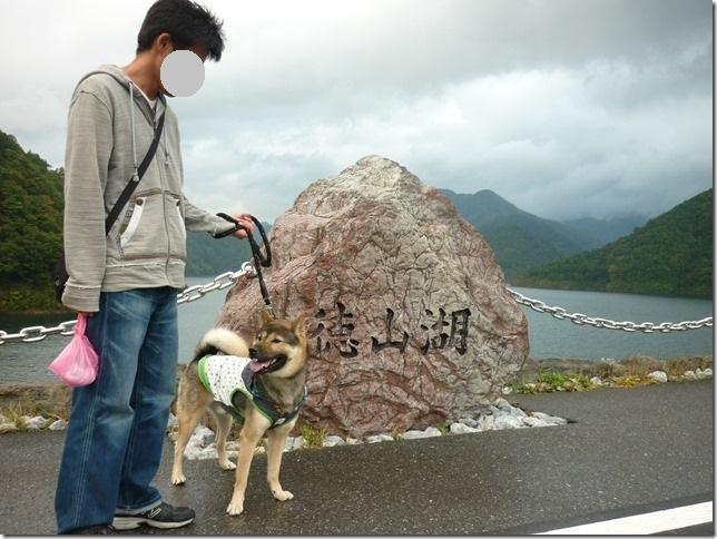 201510ダム散歩徳山ダム2-01