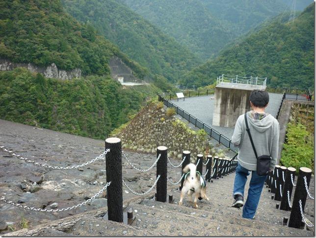201510ダム散歩徳山ダム2-04