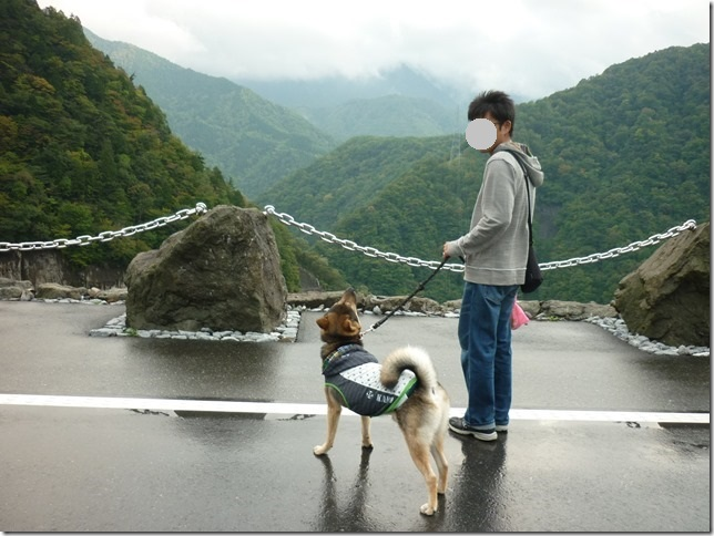201510ダム散歩徳山ダム2-16