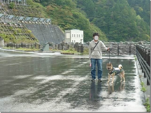 201510ダム散歩徳山ダム2-20