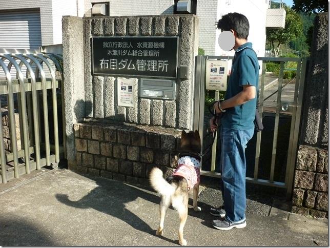 201510布目ダム-01