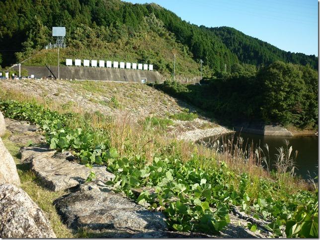 201510布目ダム-17