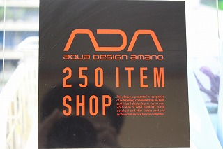 ADA1.jpg