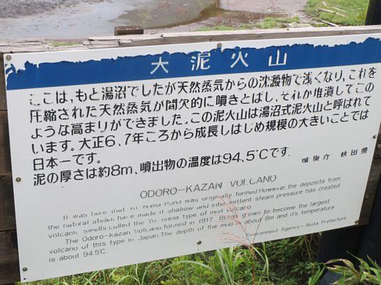 200円バックロードバスレフ本気箱製作 3