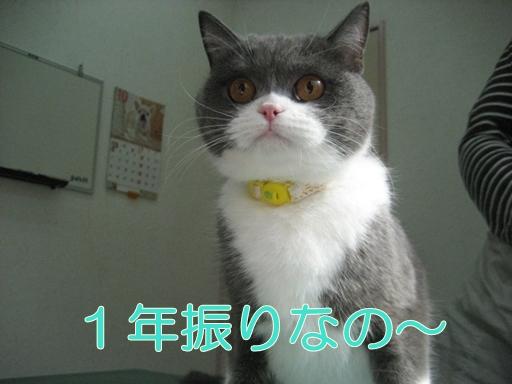 012 (7)