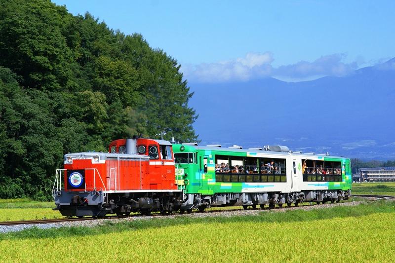 2015年9月12日 太田部~龍岡城にて (1)