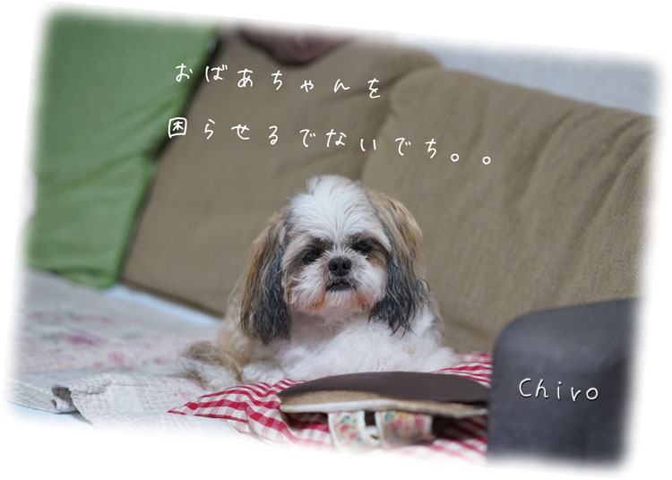 09-11_3798.jpg