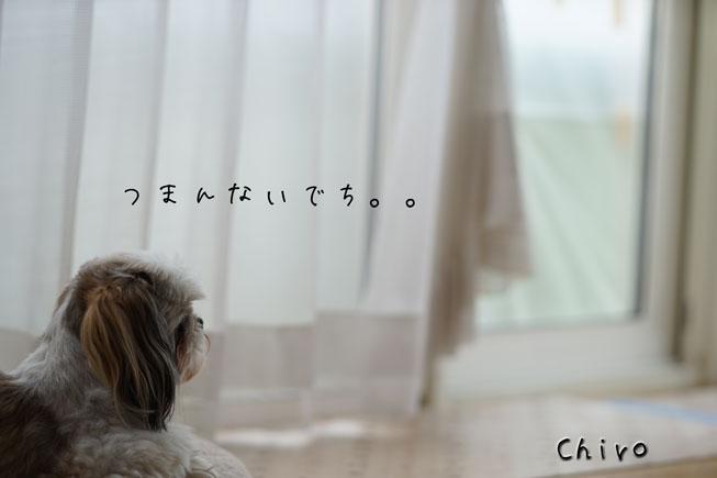 09-12_3800.jpg