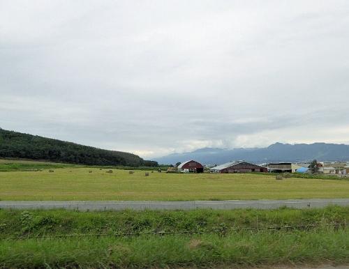 img2015-08-K-ai-Hoshino011.jpg