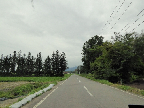 img2015-08-K-ai-Hoshino012.jpg