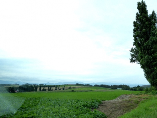 img2015-08-K-ai-Hoshino034.jpg