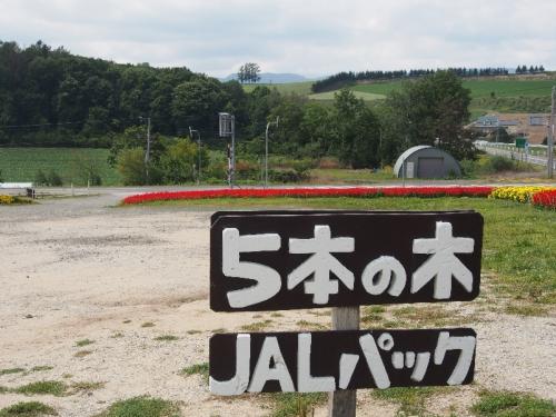 img2015-08-K-ai-Hoshino092.jpg