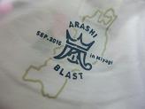 ARASHI Brast in 宮城 グッズ