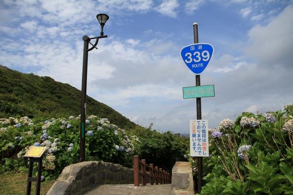 1508sukayu 7d (44)