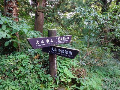 鳥取 (219)