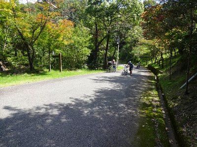 海道 (54)