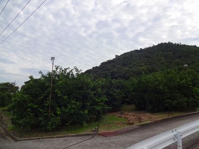 海道 (268)