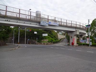 海道 (309)