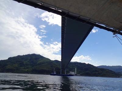 海道 (494)