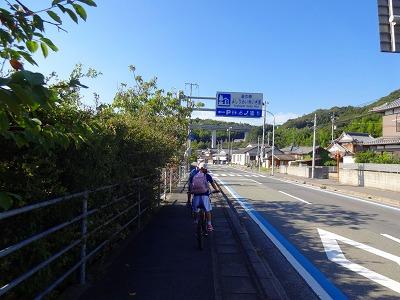 海道 (534)