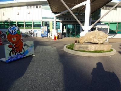 海道 (589)