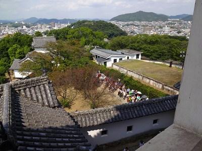 海道 (790)
