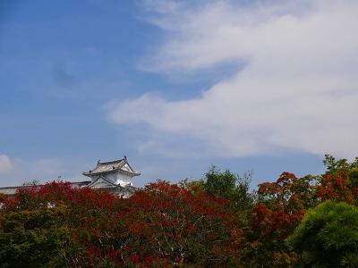 海道 (871)