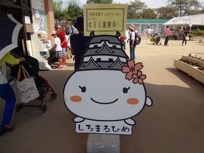 海道 (879)
