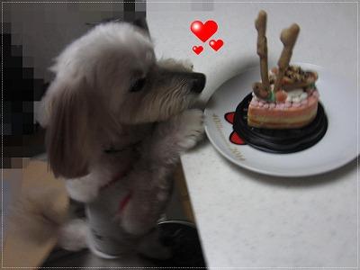 今日がお誕生日5
