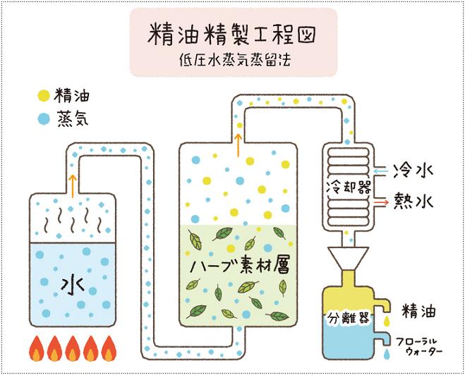 ハーバルバーム 精油抽出法