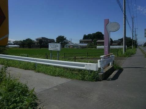 P8270086.jpg