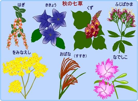 nanakusa2A2R2.jpg